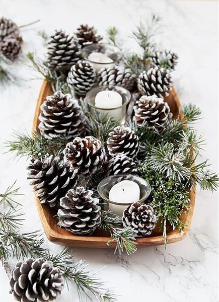 Idées décorations noel cocottes
