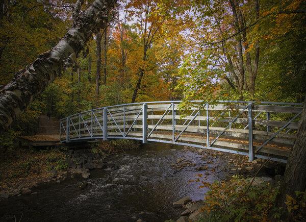 Un petit pont poétique du parc de l'Escarpement.