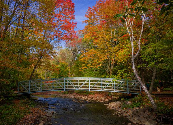 Un petit pont relie les deux rives de la rivière qui parcourt le parc de l'Escarpement, en automne.